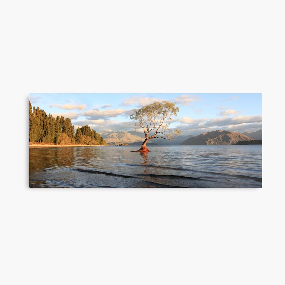 Lake Wanaka, South Island, New Zealand Metal Print
