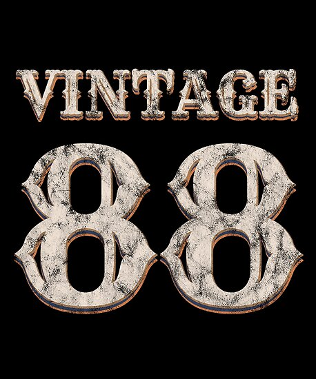 Vintage 88 Tshirt 30th Birthday Gift For 30 Year Old