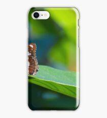 Butterflies on a leaf B iPhone Case/Skin