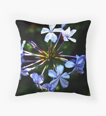 Agapantha Blue Throw Pillow
