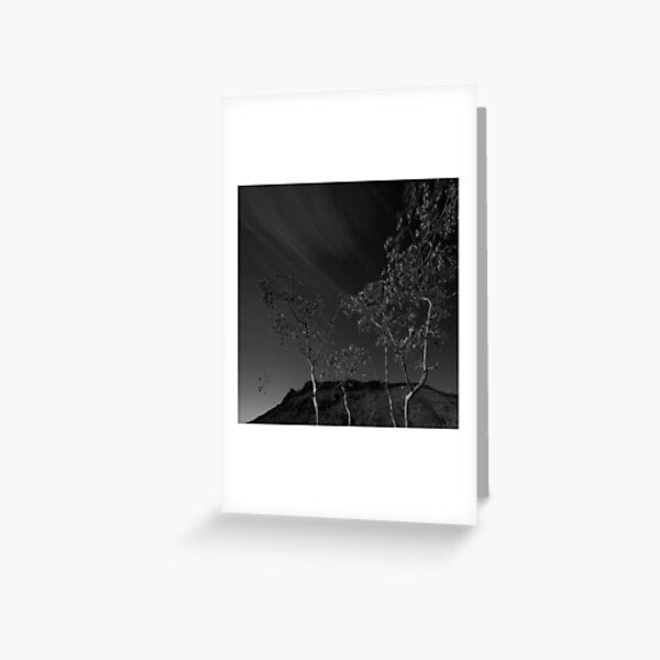 Trees in Flinders-38 Greeting Card