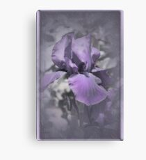 Purple Iris #3 Canvas Print