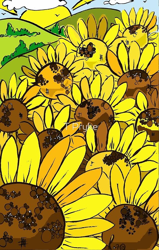 fields of Sun! by T Pryke