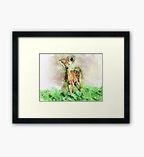 Lovely Deer Framed Print