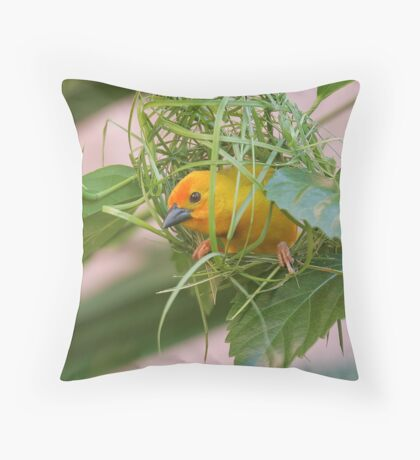 Golden Palm Weaver 7 Throw Pillow