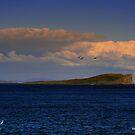 Staffin Island by Alexander Mcrobbie-Munro