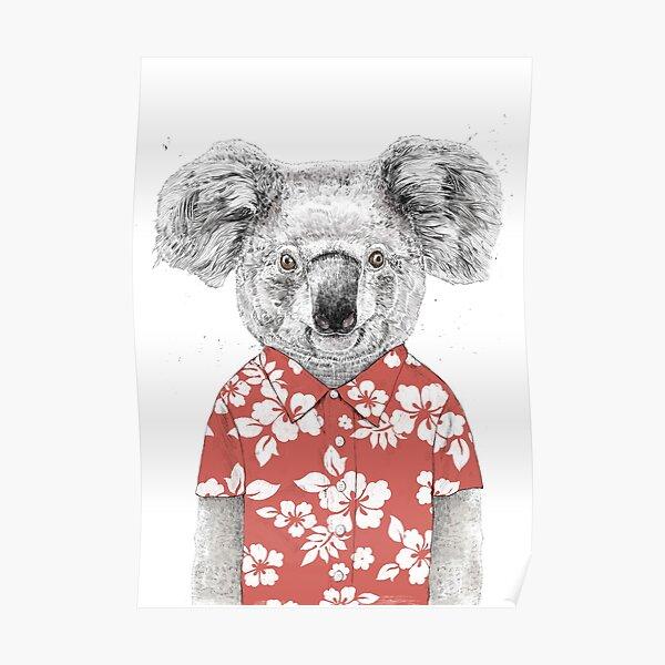 Summer koala Poster