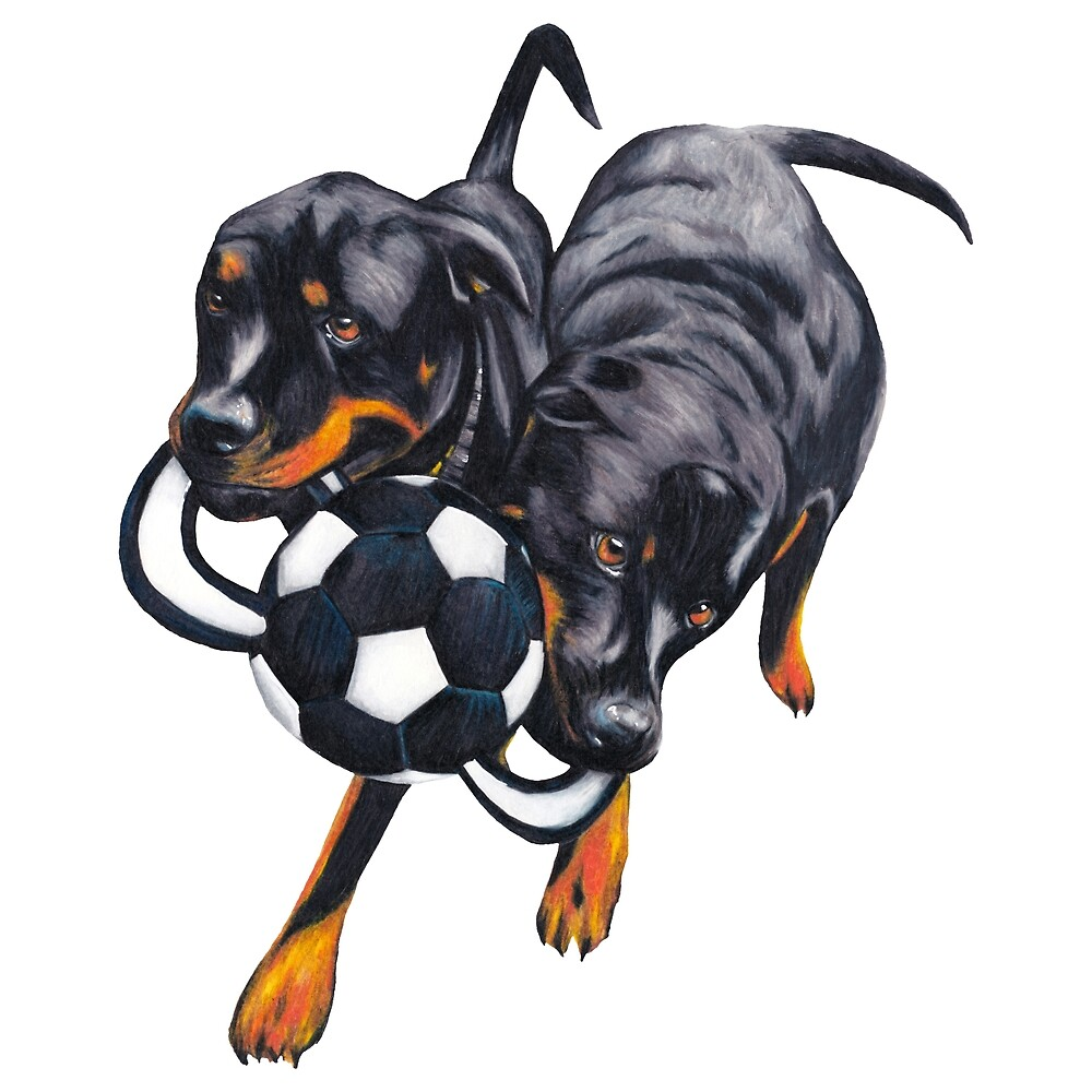 Ali & Angus Rottweiler by Apatche Revealed