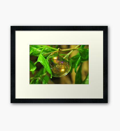 World in a Bubble Framed Print