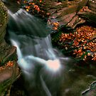 Murray Reynolds Falls by Aaron Campbell