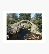 Packhorse Bridge, Carrbridge Art Print