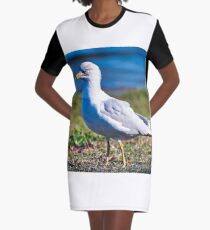 Seagull Portrait Graphic T-Shirt Dress