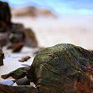 Sand  by Alexander Mcrobbie-Munro
