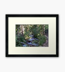 calvin and hobbes forest Framed Print