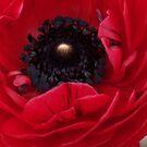 Red Ruffles  by Shaina Haynes