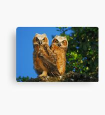Creatures of the Wood Canvas Print