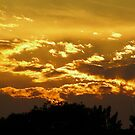Sky Dragon's Flames by MoxieNox