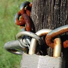 Rusted Lock by Chelsea Brewer