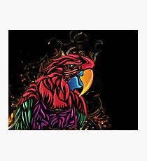 Macaw Parrot filligree Photographic Print