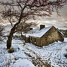 Game Of Thrones Cottage by Derek Smyth