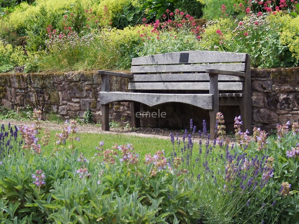 In an English Country Garden by emele