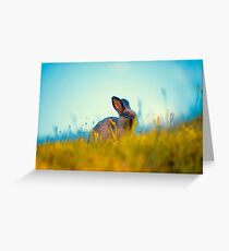 Grass Fed Bunny Greeting Card