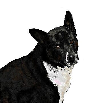 Roxie, The Art Hound by ckbesq