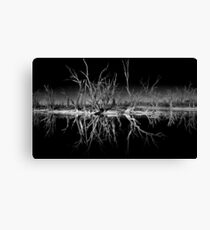 Nighttime Reflections Canvas Print