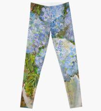 Endless Summer Hydrangea Leggings
