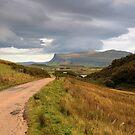 The road  to Ardmeanach by Alexander Mcrobbie-Munro