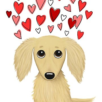 Long Haired Cream Dachshund with Hearts by ShortCoffee