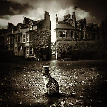 Bob The Cat by dandelionimage