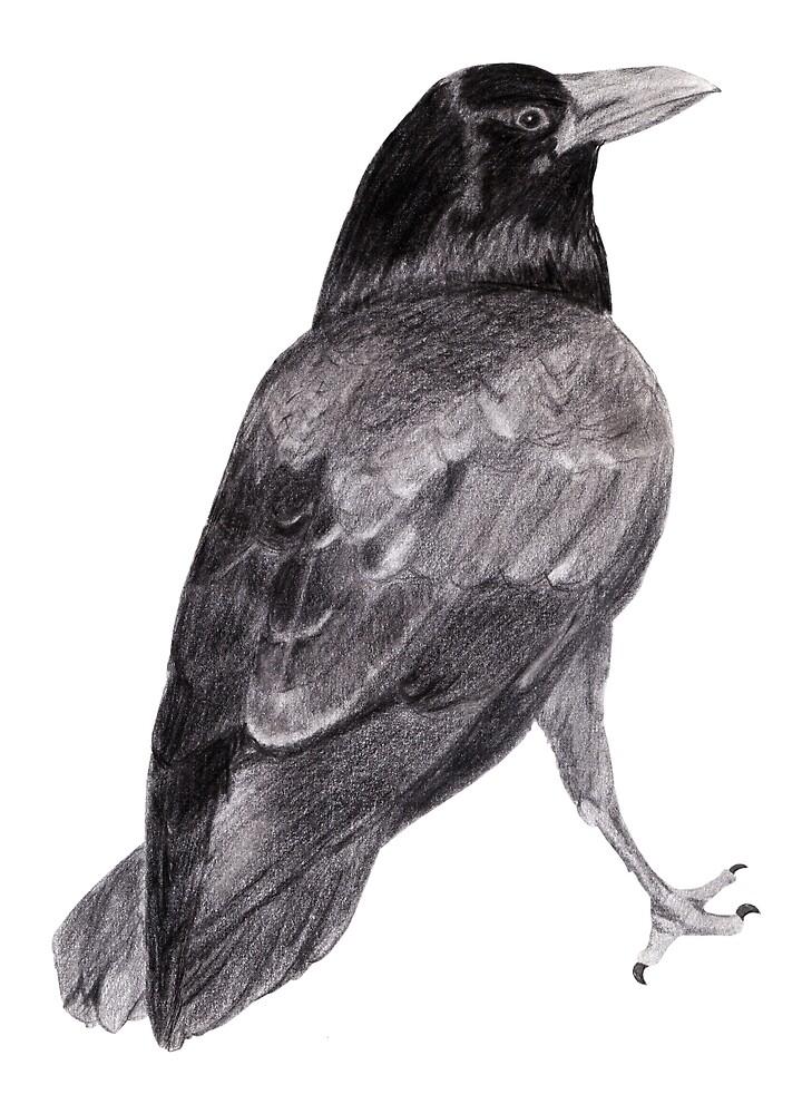 Will's Raven by Linda Ursin