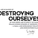 destroying ourselves - stephen hawking  by razvandrc