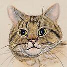 Felix (watercolour on paper) by Lynne Henderson