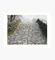 The Old Packhorse Bridge Art Print