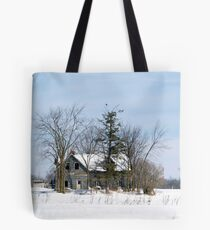 A Red-tailed Hawk's Home Tote Bag