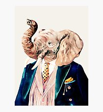 Elephant (cream) Photographic Print