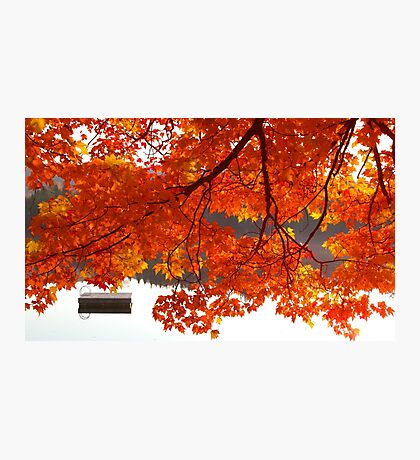 Summer's End - Fall creeps in Photographic Print
