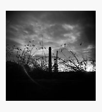 Sunsets in B&W Photographic Print