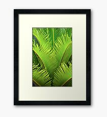 Nature Greenery Framed Print