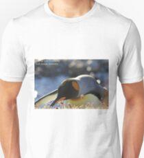 Fortuna Bay Postcard, South Georgia T-Shirt