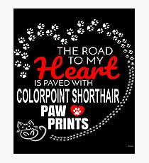 The Road To My Heart Is Paved With Colorpoint Shorthair Paw Prints - Gift For Passionate Colorpoint Shorthair Cat Owners Photographic Print