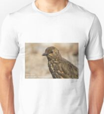 Tristan Thrush, Nightingale Island T-Shirt