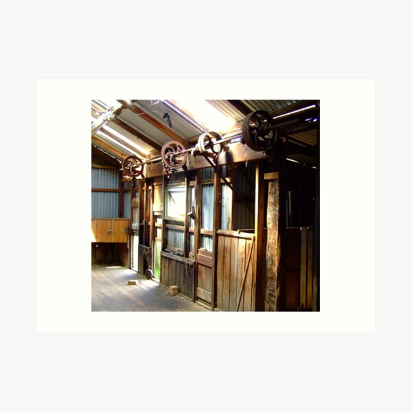 Inside the shearing shed Art Print