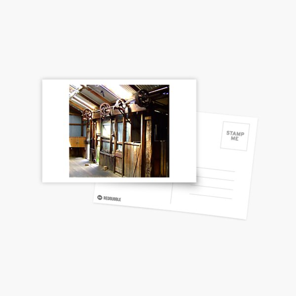 Inside the shearing shed Postcard