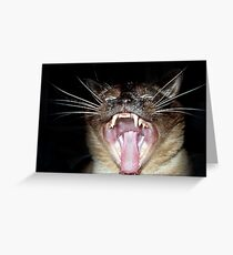 Attack of the Psycho Siamese Greeting Card