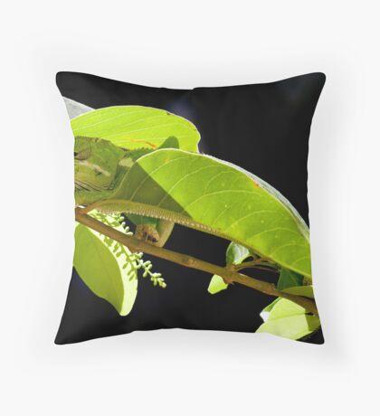 Chameleon 1 Throw Pillow
