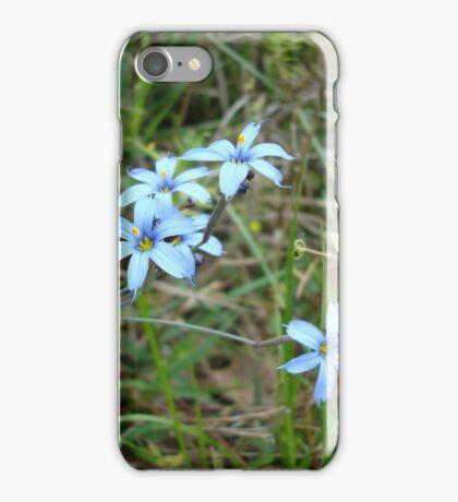 Blue-eyed Grass iPhone Case/Skin
