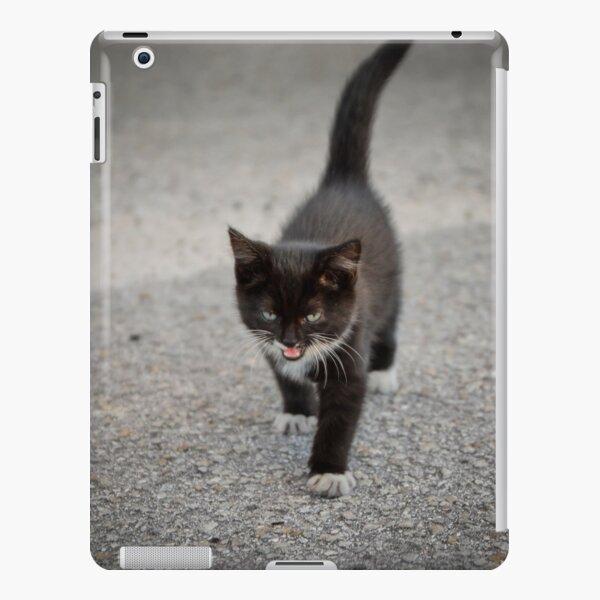 Black kitten iPad Snap Case